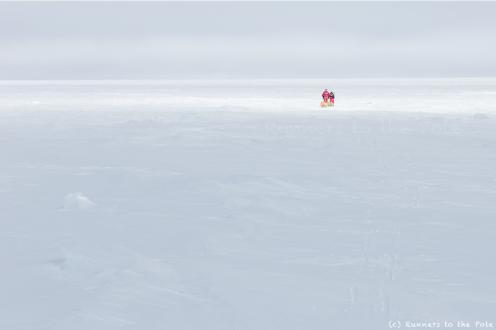 Plus que 500 kilomètres à parcourir pour réussir la traversée de l'Antarctique à pied. Et très peu de jours pour atteindre cet objectif. Le brouillard ralentit notre progression. Le temps de sommeil est réduit au maximum - 5 heures par jour en moyenne - alors que les journées de marche s'allongent jusqu'à 12, 13 14 heures.